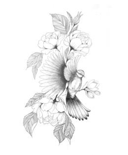 Gallïane Murmures – Cyanistes caeruleus
