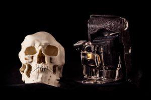 Photographie - Crâne - Appareil Photo - Vanité