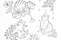 Gallïane Murmures – Hanako-neko