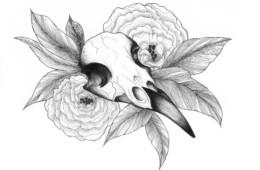 Gallïane Murmures – Bird Skull